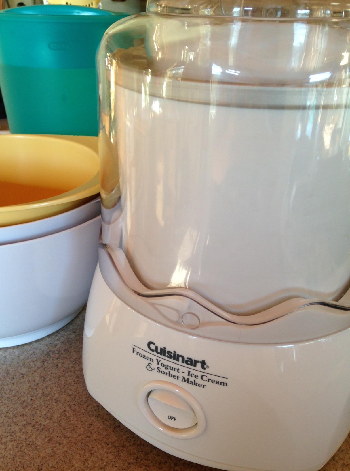 Counter Top Ice Cream Maker Recipes : Cuisinart Countertop Super-easy Ice Cream Maker. No ice or rock salt ...