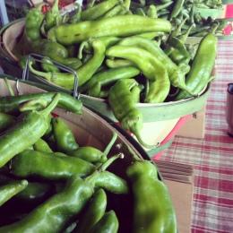 Fresh Hatch Green Chile