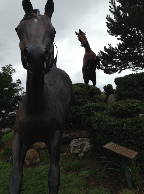 Two horses race down the mountainside
