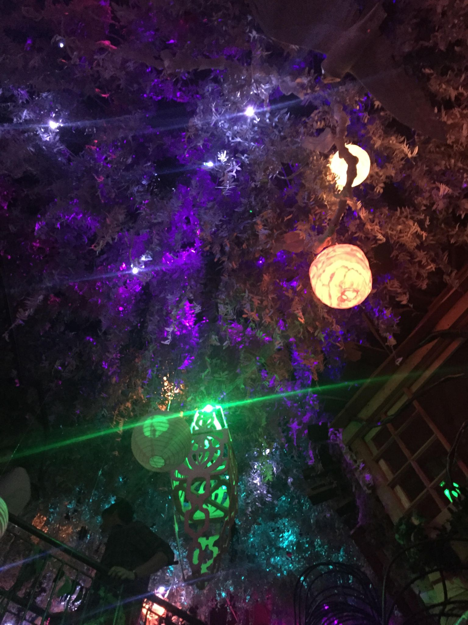 Lanterns light the way at Meow Wolf in Santa Fe.